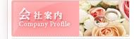 中国美人 国際結婚 仲介 結婚相談所 会社案内